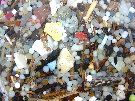 Plastic-beach-litter-expose-1-1-550